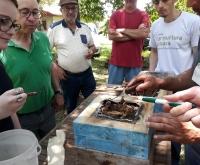 Acic Curitibanos - Apicultores participam de capacitação